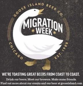 goose island migration week