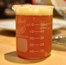 actual beer science fair