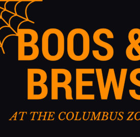 boos-and-brews